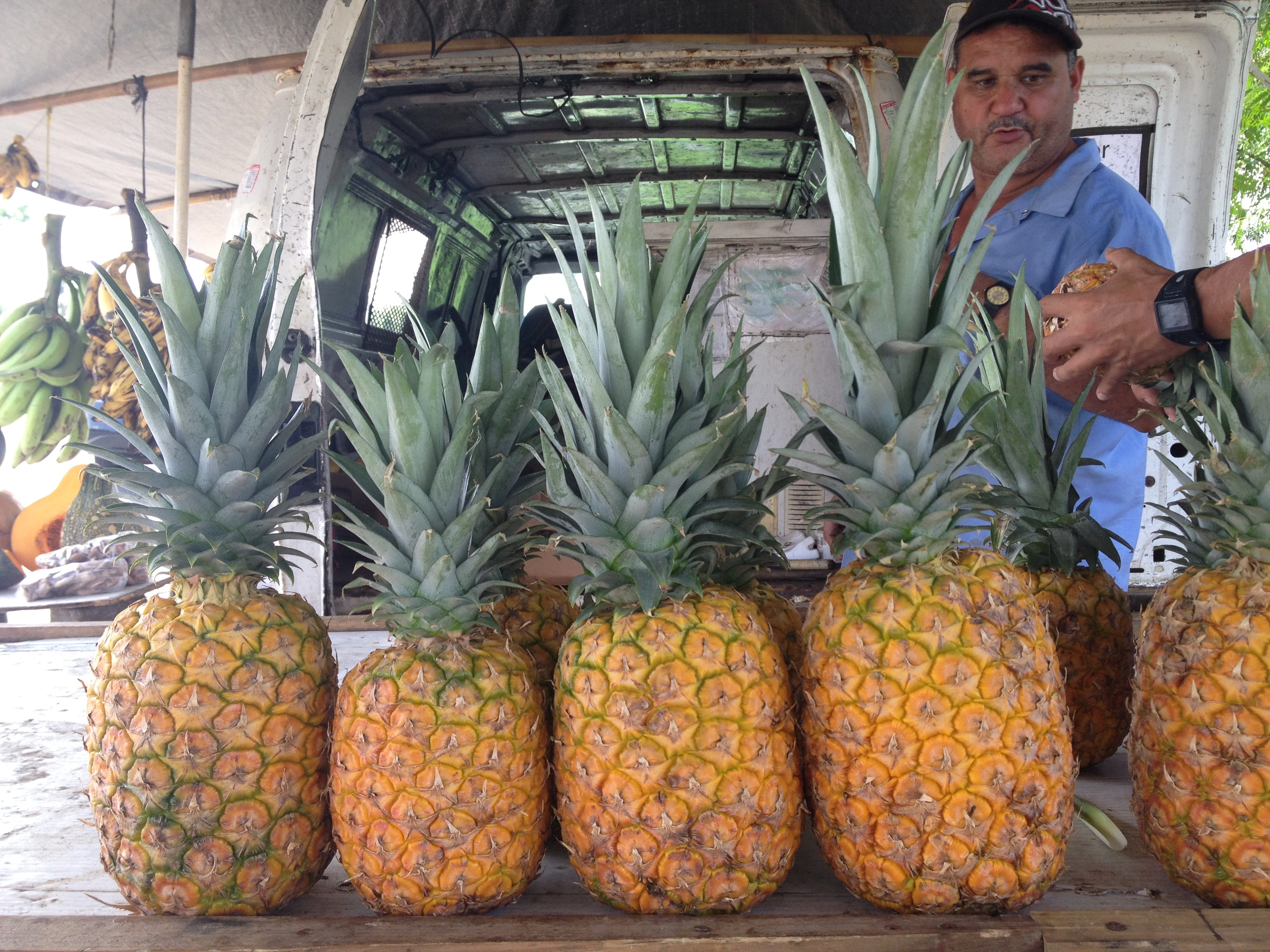 pineapples or pinas