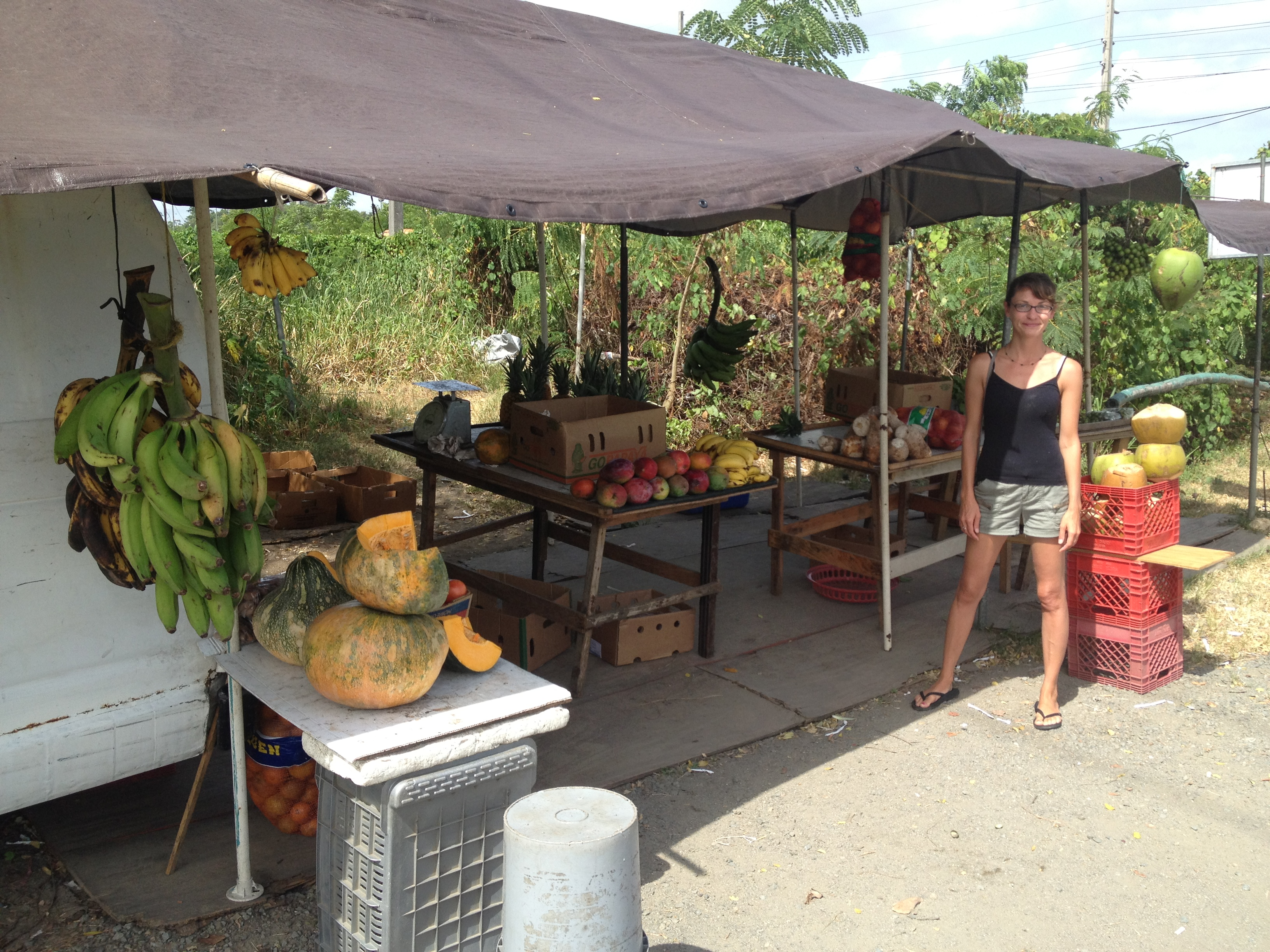 Puerto Rican Fruit Stand