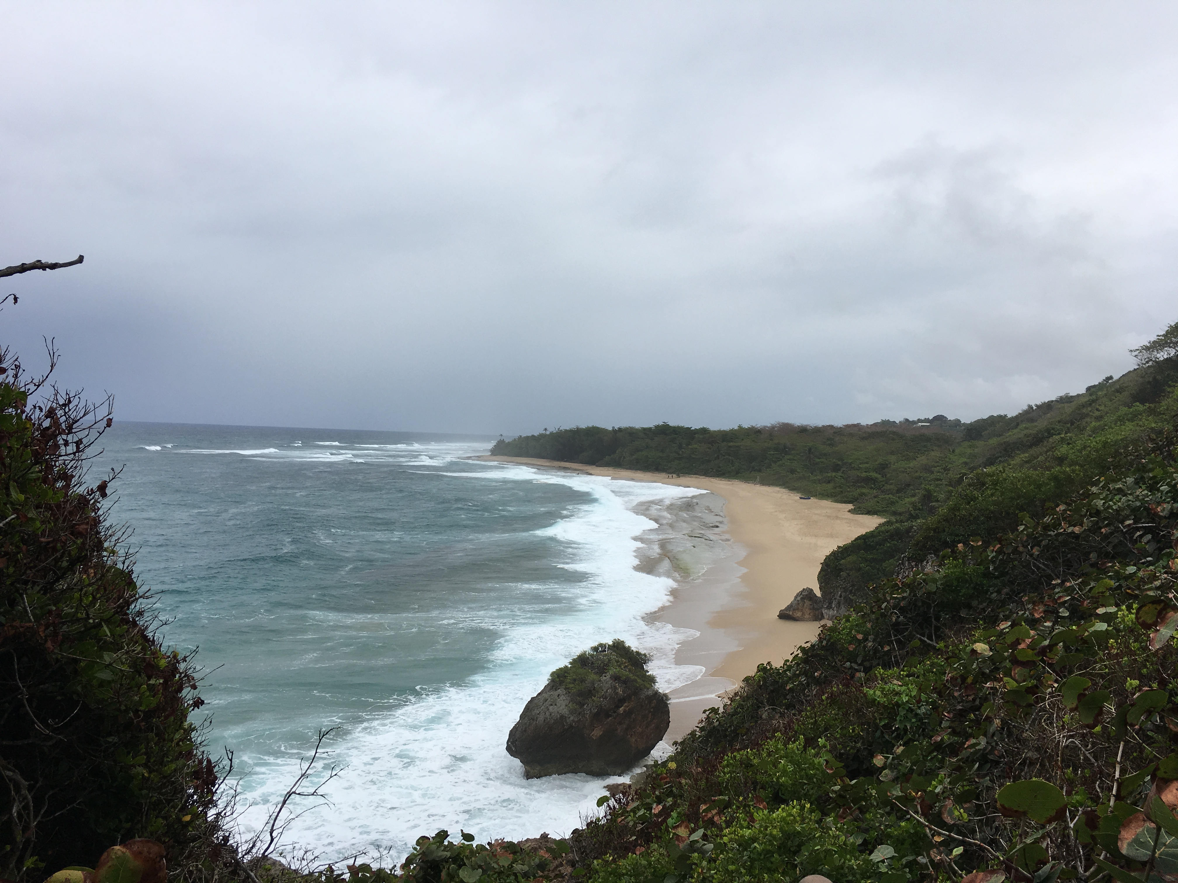 Survival Beach, PR